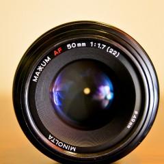 Pensez au photographe professionnel, pour immortaliser vos plus beaux souvenirs