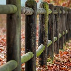 Pourquoi est-ce bénéfique d'installer une clôture?